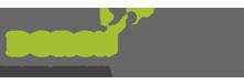 לוגו תוספות שיער דורון פסקינו